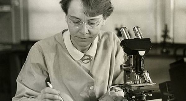 Lg barbara mcclintock  1902 1992  shown in her laboratory in 1947