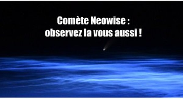 Lg neowise