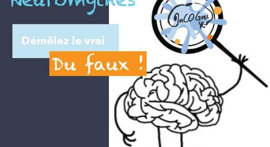 Lg neuromythes ateliers